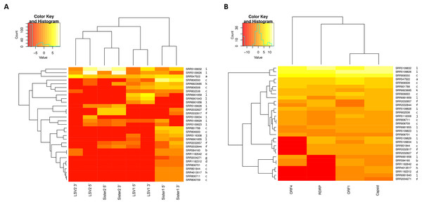 Heat maps of LSV read abundance in SRA accessions.