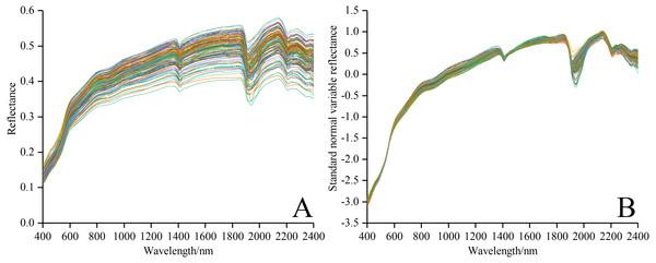 Spectral curves of all soil samples.