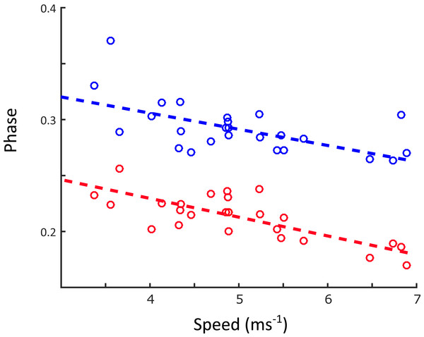 Changes in contralateral limb phase as a function of speed (ms−1).