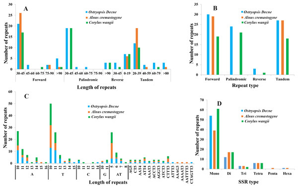Analyses of repeated sequences and SSRs in the three Betulaceae chloroplast genomes.
