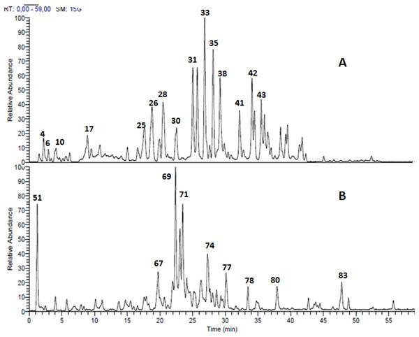 LC-MS chromatogram.