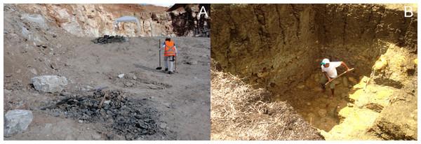 Ipubi and Romualdo excavation sites.