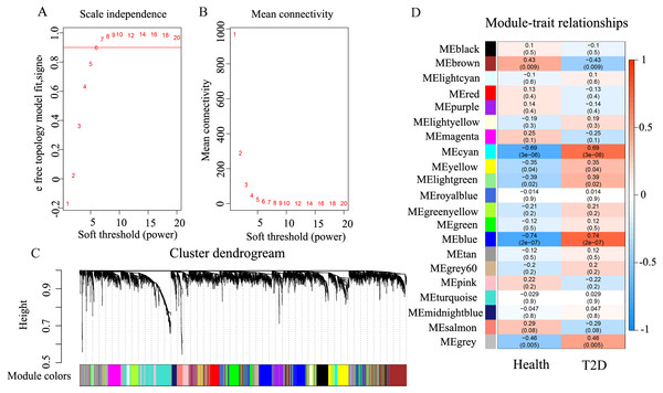 The results of weighted co-expression gene network analysis.