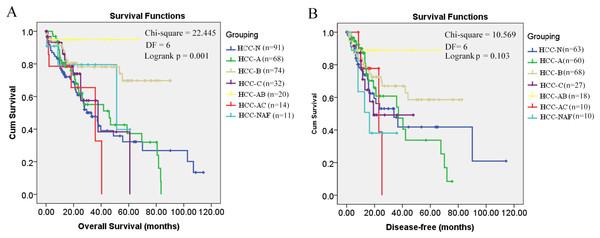 Kaplan–Meier survival analysis of HCC patients in different groups.