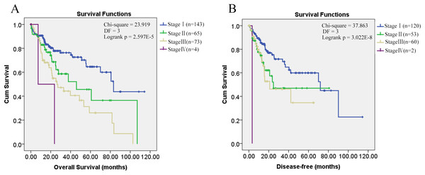 Kaplan–Meier survival analysis of HCC patients in different pathological stages.