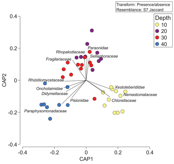 Presence/absence of eukaryotic families collected at two coral reefs in Okinawa, Japan.
