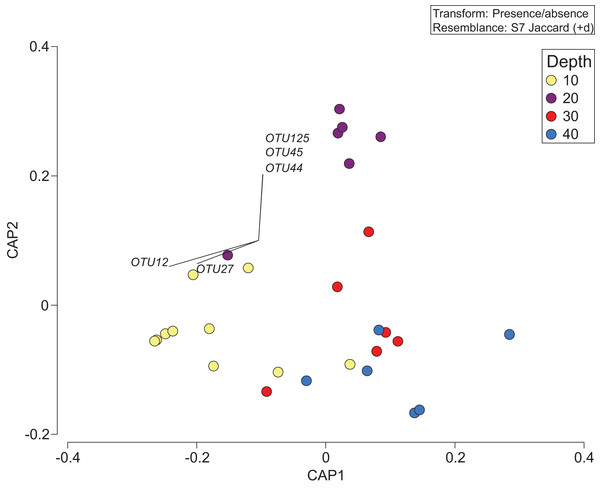 Presence/absence of the combined OTU dataset for class Anthozoan and Demospongiaecollected at two coral reefs in Okinawa, Japan.