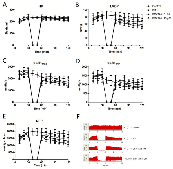 TAX treatment improved the cardiac function recovery of rats during myocardial I/R injury in vitro model.