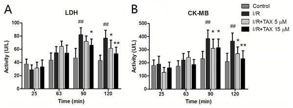 Effect of TAX on injury of cardiomyocytes by measurement of LDH and CK-MB.
