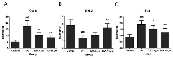 Effect of TAX on the expression of Cyt-c, Bax, and Bcl-2 protein.