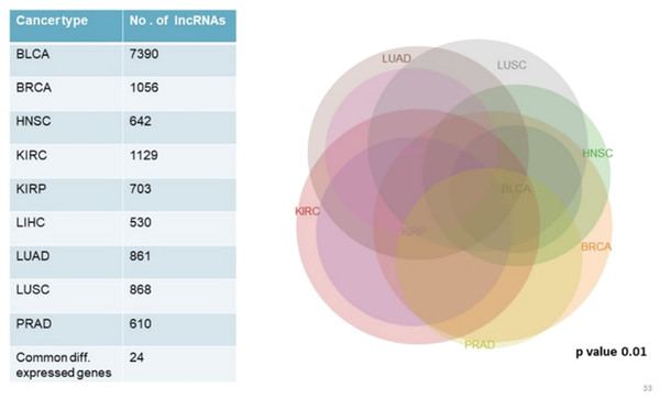 Common significantly differentially expressed noncoding genes (lncRNAs) in nine types of tumors.