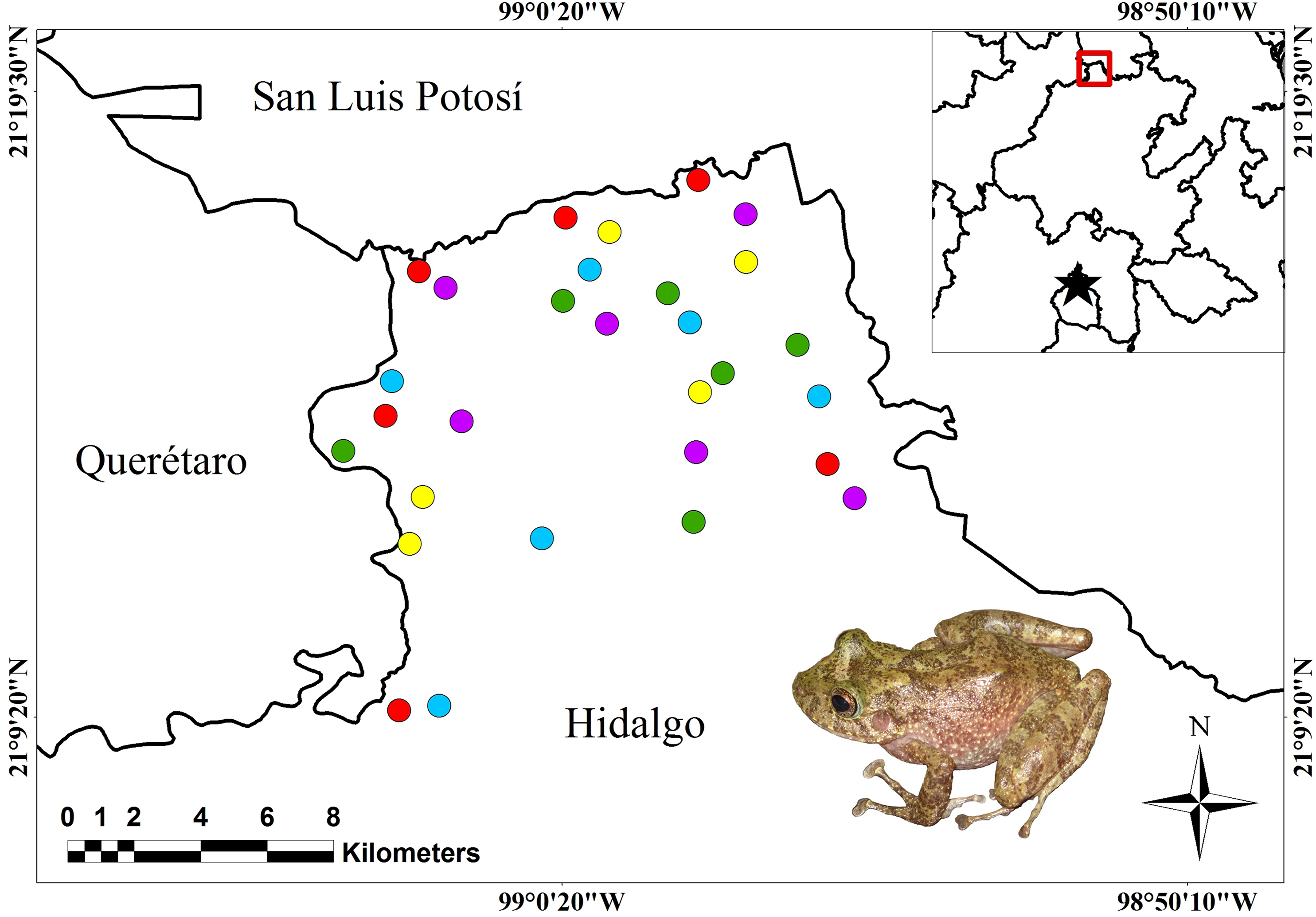 ea867f19bc02 Effects of traditional agroecosystems and grazing areas on amphibian ...