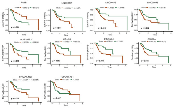 Kaplan–Meiercurve analysis of DElncRNAs and overall survival rate in tongue squamous cellcarcinoma patients.