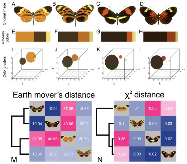 Color similarity analysis of Heliconius butterflies using earth mover's distance and χ2 distance.