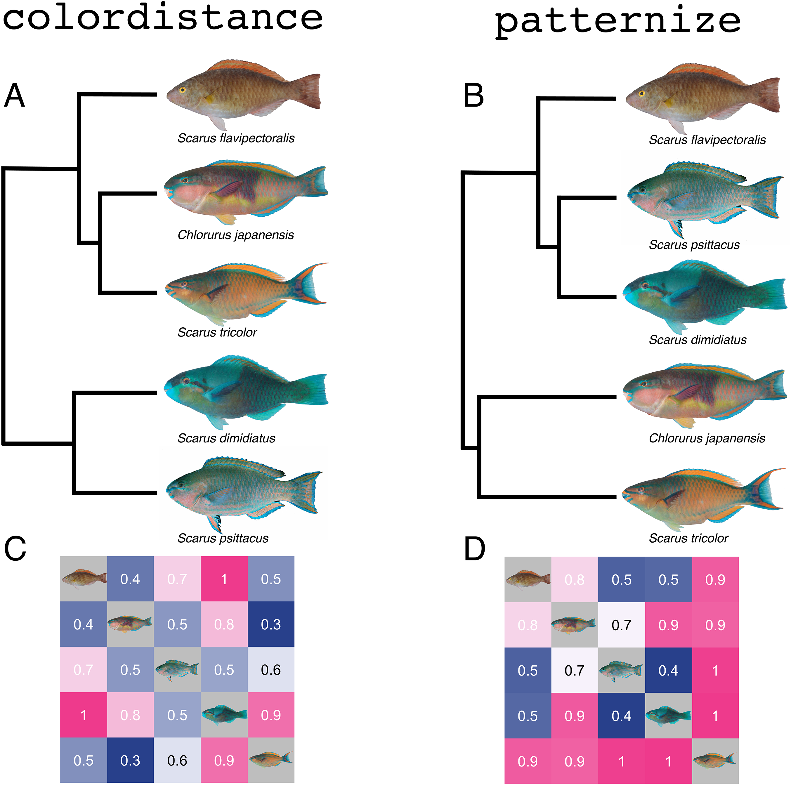 Quantitative color profiling of digital images with earth
