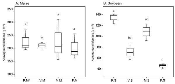 Boxplots illustrating differences in group averages in aboveground plant biomass of maize (A) and soybean (B) at 6 weeks after sowing.