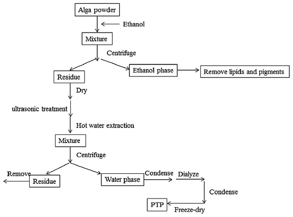 Extraction process.