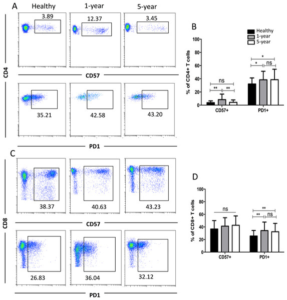 Parental proportions of CD57+ and PD1+ T cells among different groups.