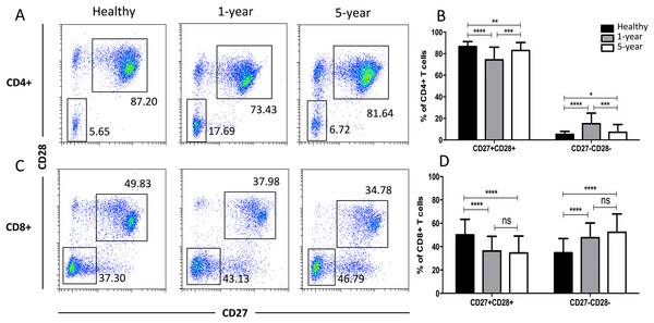 Parental proportions of costimulatory molecular (CD27 and CD28) T cells among different groups.