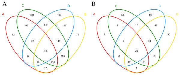 Shared and unique bacterial (A) and fungal (B) OTUs among samples in different treatments.