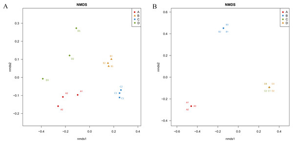 Nonmetric Multidimensional Scaling ordination showing the weighted UniFrac dissimilarities of bacterial (A) and fungal (B) communities in the roots and soil with T. indicum associations or not.