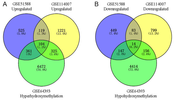 Identification of aberrantly hydroxymethylated differentially expressed genes in the gene expression datasets (GSE51588, GSE114007) and the gene hydroxymethylation dataset (GSE64393).