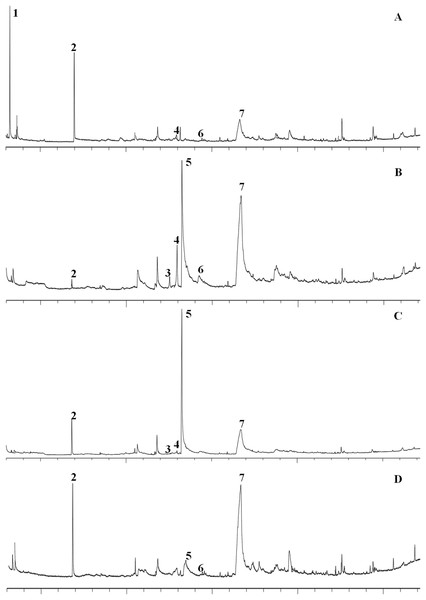 GC–MS spectra of the constituents of four different varieties of garlic.