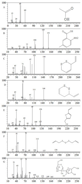 Mass spectra of major compounds.