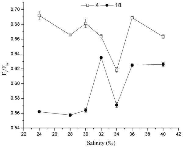 Effects of salinity on the Fv/Fm of C. valida after 4 and 18 days of culture.