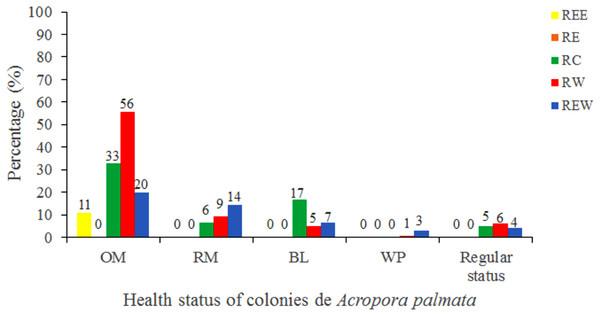 Health status of colonies of Acropora palmata, in five reserve zones, in Jardines de la Reina National Park, Cuba.