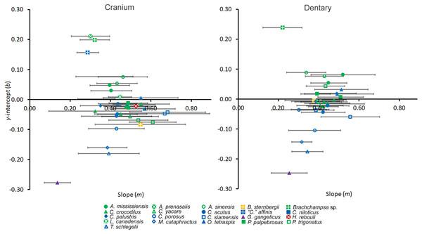 Regression information for shape heterodonty.