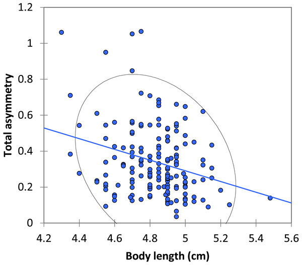 The relationship between body length and total asymmetry for BW males of P. zoe.