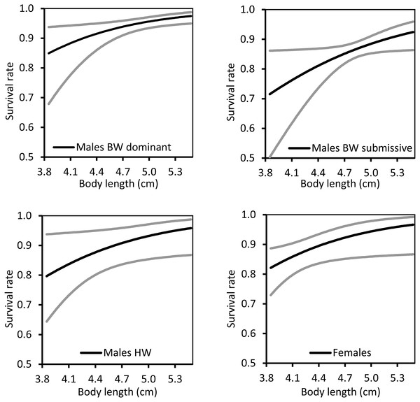 The relationship between body length and survival rate for territorial (BW), non-territorial (HW) and females of Paraphlebia zoe.