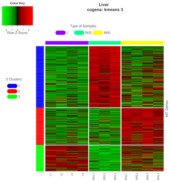 Heatmap of co-expressed genes.