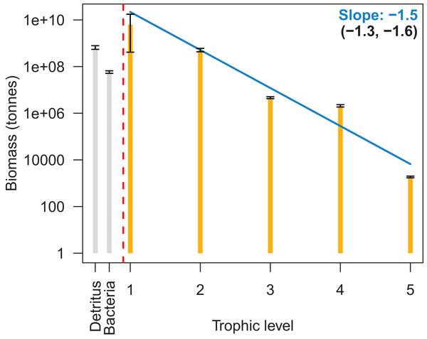 Biomass by trophic level with 95% confidence intervals from the 1900 to 2016 Chatham Rise Atlantis model simulation.
