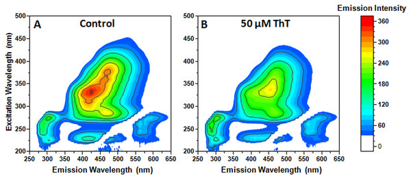 Aggregated Phe fluorescence emission changes after the addition of 50 µM ThT.