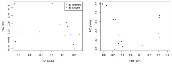 PCoA of β diversity based on UniFrac matrices from the Cape Otway 2013 koala collection.