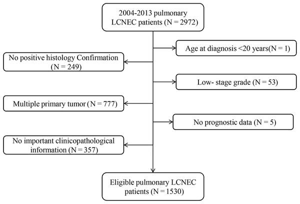 Flow chart for screening eligible patients.