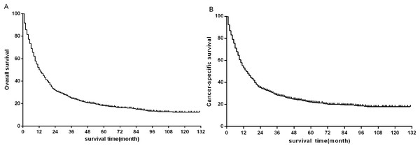 Kaplan–Meier survival plots for eligible patients showing (A) overall survival (OS) and (B) disease-specific survival (DSS).