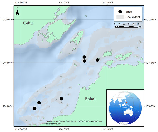 Location of the six reef sites surveyed along the Danajon Bank reef complex, north of Bohol, Philippines.