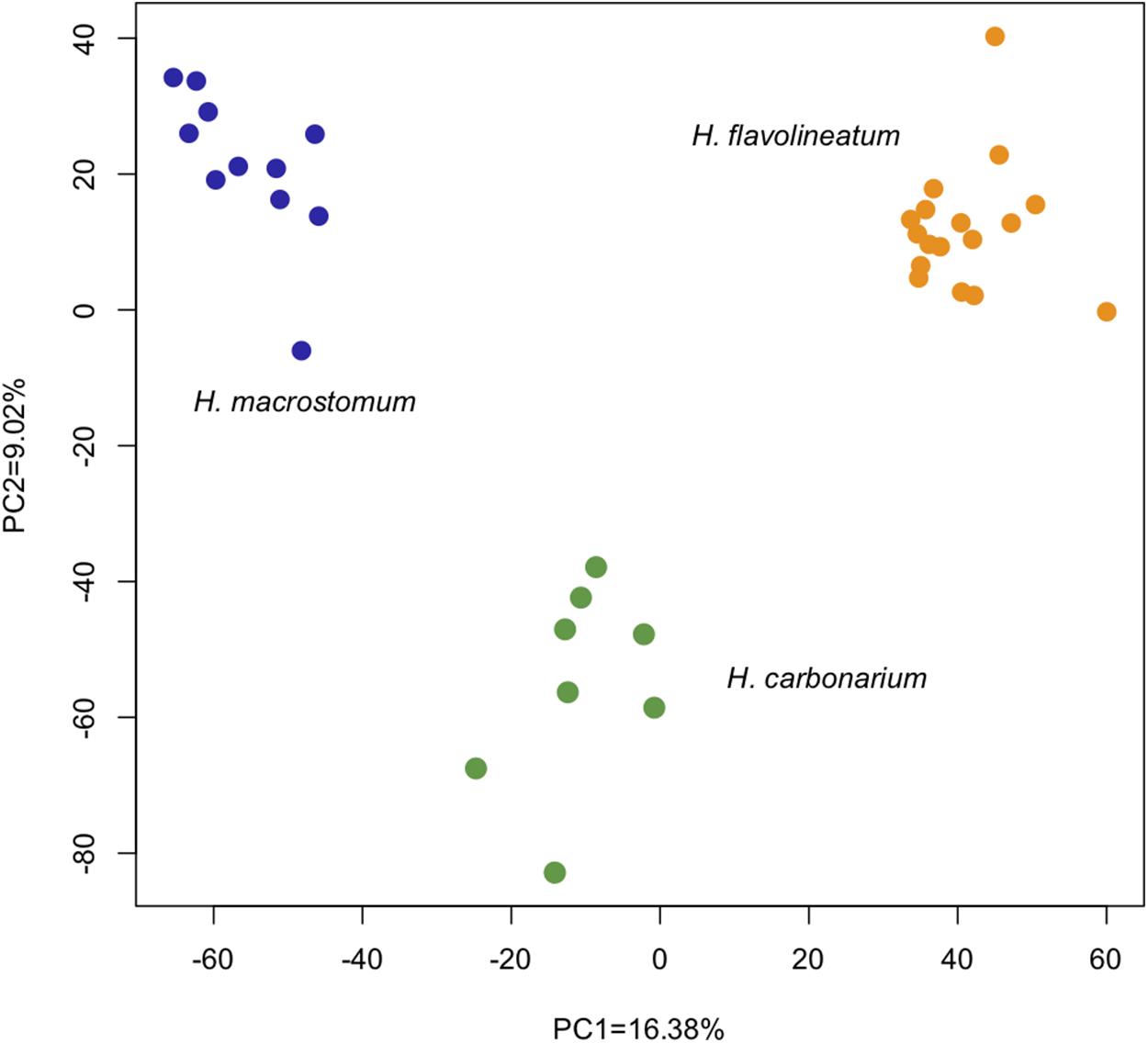 Comparative transcriptomics of sympatric species of coral reef