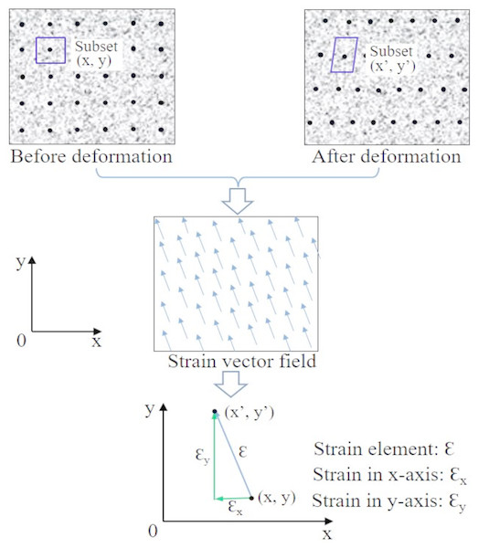 Principle of 2D strain measurement of region of interest in samples using DIC.