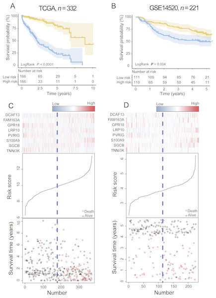 The PCG signature predicts overall survival of patients with HCC in the training set and test set.