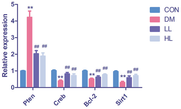 Real time quantification results of the miRNAs target genes in four groups.