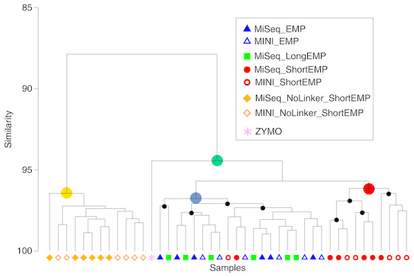 Comparison of representation of a mock community standard using all primer sets and sequencing platforms.