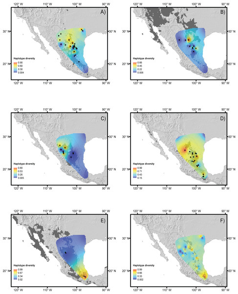 Haplotype diversity of the studied species.