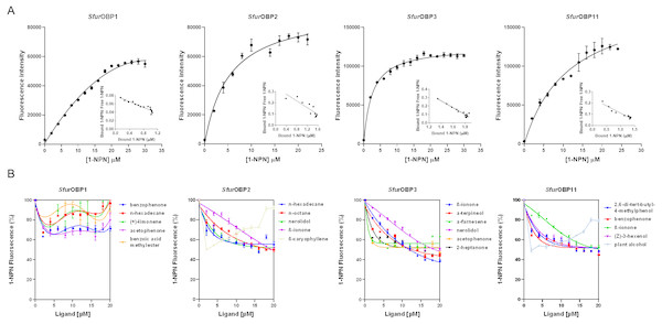 Binding curves of 1-NPN to SfurOBPs and binding curves of different ligands to SfurOBPs.