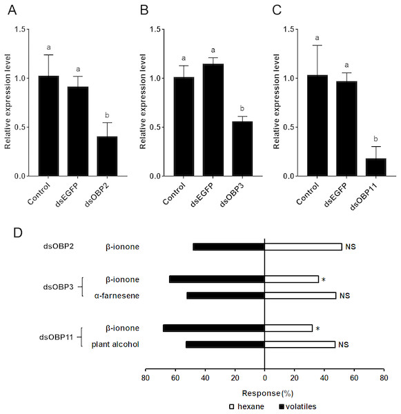 The relative expression levels of SfurOBPs in S. furcifera and behavioral responses of dsRNA treated S. furcifera in the Y-tube olfactometer bioassay.