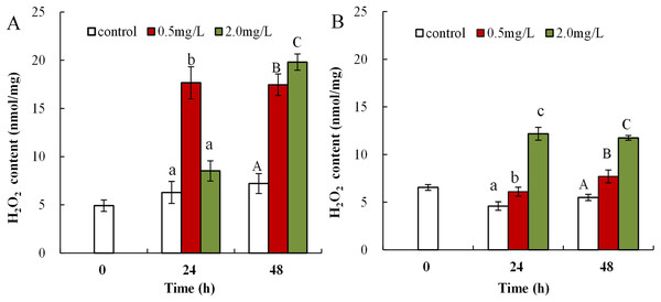 DBP induced change in D. magna H2O2 concentrations.