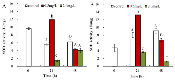 DBP induced changes in SOD activity in D. magna.
